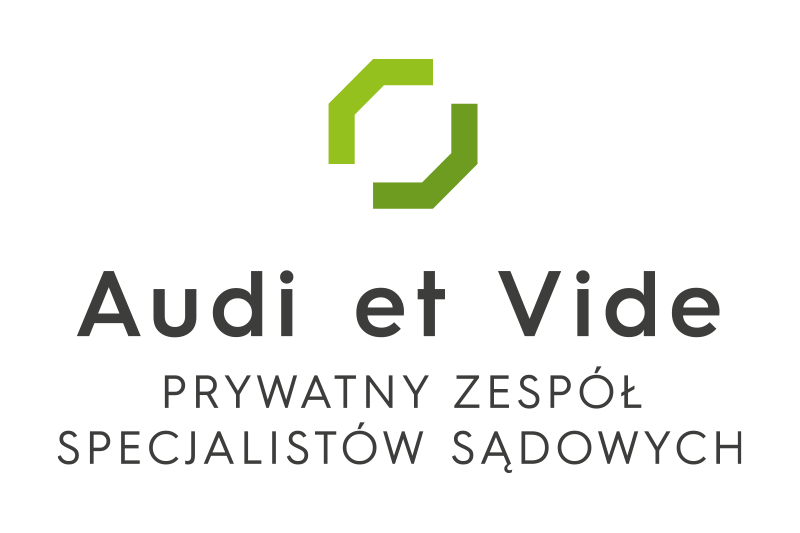 Audi et Vide logo